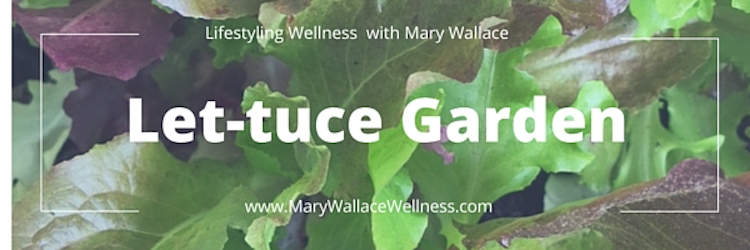 Let-tuce Garden – How To Container Garden in 3 Easy Steps