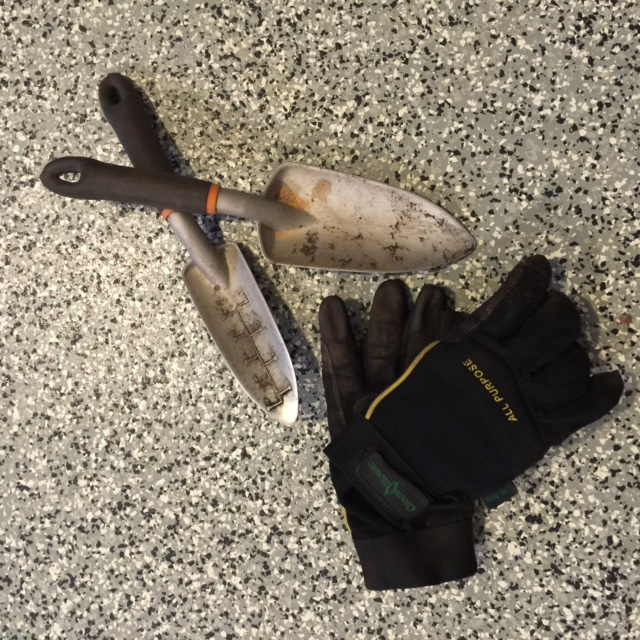 trowels and gloves